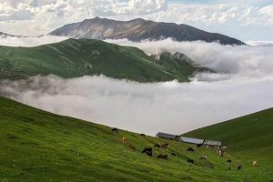 Masal highlands